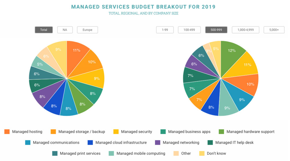 Managed Services Budget 2019