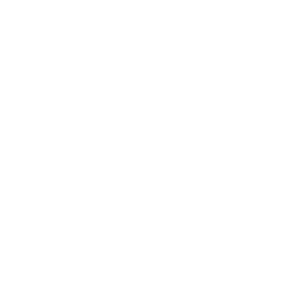 DataParQ_wordmark_white